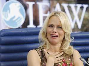Pamela Anderson and Julian Assange on romance rumours