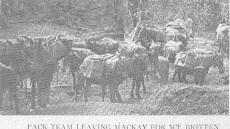 Many settlers left Mackay to try to strike it lucky on newly discovered gold fields near Nebo around 1861. The township of Mount Britton sprang up as a result but was mostly abandoned in the early 1900s when the rush was over.