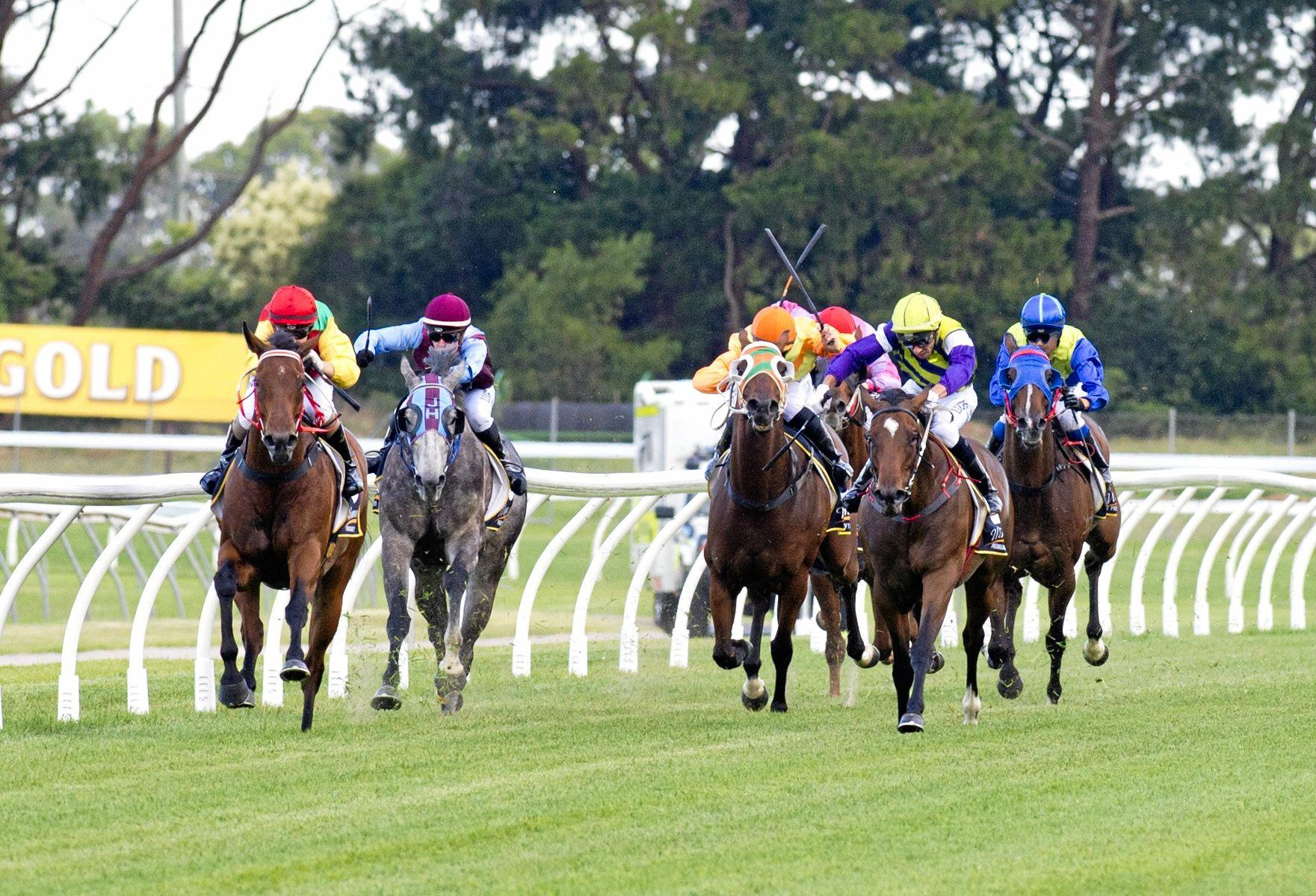 A change in race field size policy is set to benefit Queensland racing industry participants.