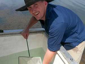 Fish habitats designed to boost dam breeding numbers