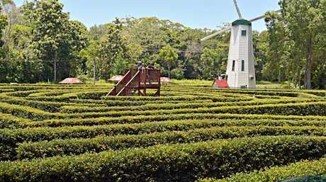 The Bellingham Maze.