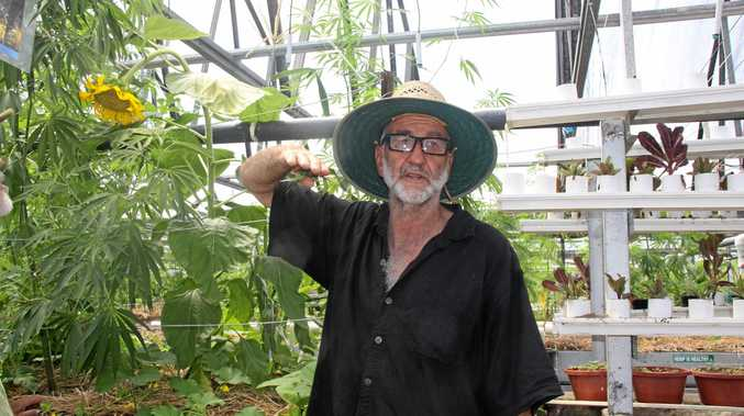Wayne 'Wadzy' Wadsworth welcomed more than 100 interested people including farmers and business people to his Hemp Farming open education day at his Nimbin property.