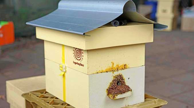 PRICELESS: An example of one of the five hives stolen from Yandaran that Sunshine Coast bee researchers were using for their studies.