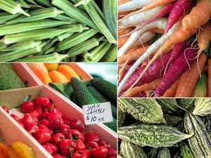 Help halt plant extinction by mixing up your menu