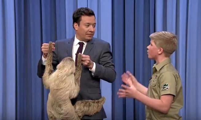 Robert Irwin introduces Tonight Show host Jimmy Fallon to a cuddly sloth.