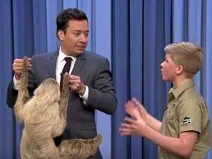 Robert Irwin introduces Jimmy Fallon to wild guests