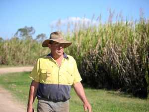 500 turn up to North Queensland canegrowers meet