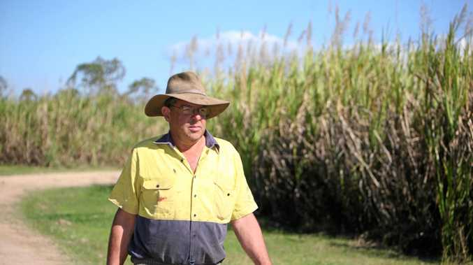 Canegrowers Mackay chairman and Plane Creek grower Kevin Borg was at the meeting between growers and politicians at Ayr on Sunday.