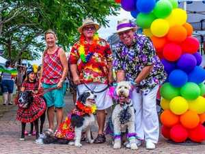Pooch parade has arrived