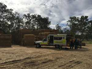 Worker injured as two 400kg hay bales fall on him
