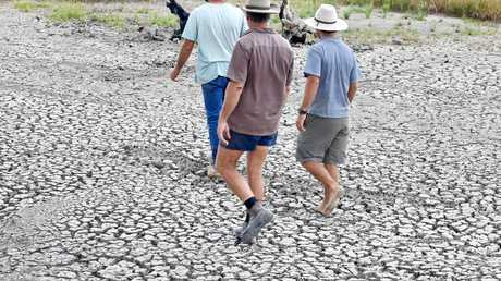 Run out of water and losing crops - Col, Mark and Bill Ward, of Bilcormack Enterprises, rely on the rapidly dwindling supply of dam water, to irrigate their small crops.