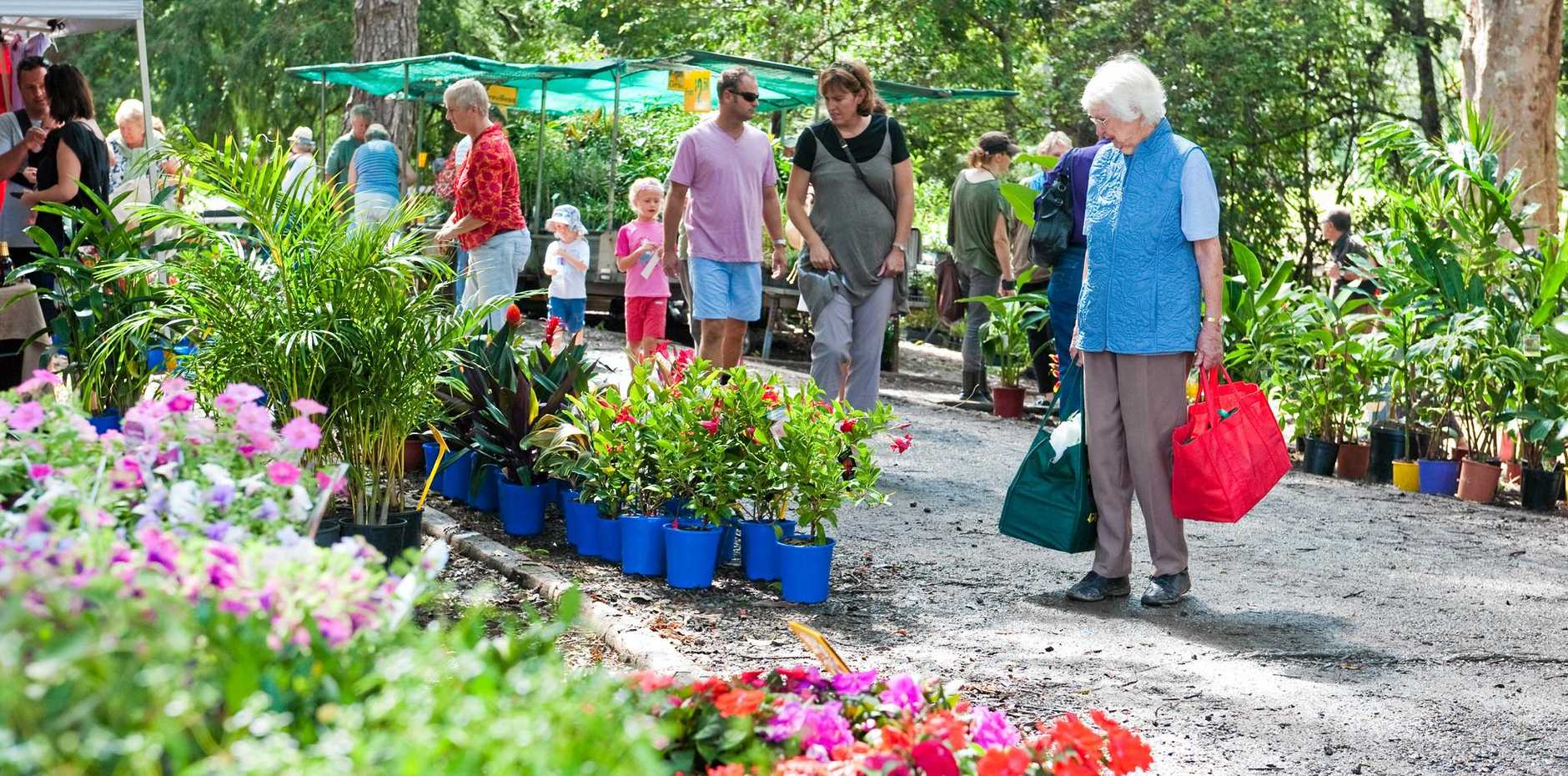 GARDEN SHOPPING: Head to Bellingen on March 11 for the Autumn Plant Fair at Market Park.