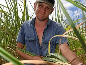 Farmer holding on to hope with time and water running out