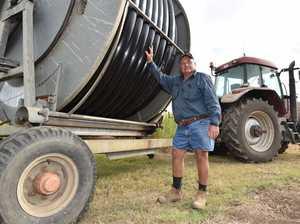 Cane Farmer Don Schmidt