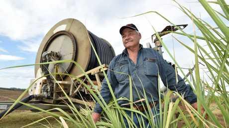 Cane farmer Don Schmidt from Island Plantation.
