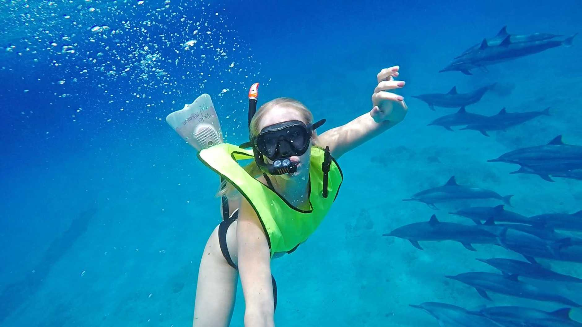 TRUE LOVE: Olympic swimmer Taylor McKeown snorkels with a pod of dolphins. She is so passionate about these beautiful creatures she is on a mission to put an end to them being in captivity.