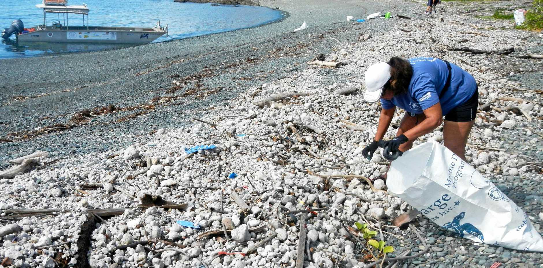 Gain a greater awareness of the challenge that marine debris throws up by attending Michelle's talk.
