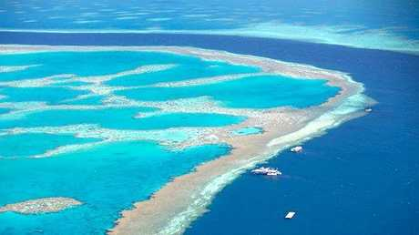 The extent of bleaching in the Great Barrier Reef has been a hot topic in recent months.