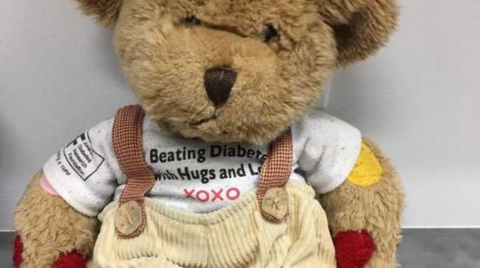Rufus the bear was left at a Toowoomba cafe and now a massive search is under way to find his owner.