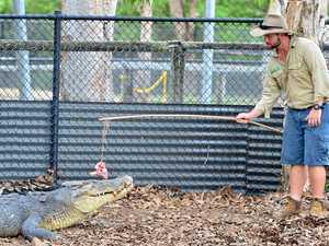 No room at the inn, says croc park