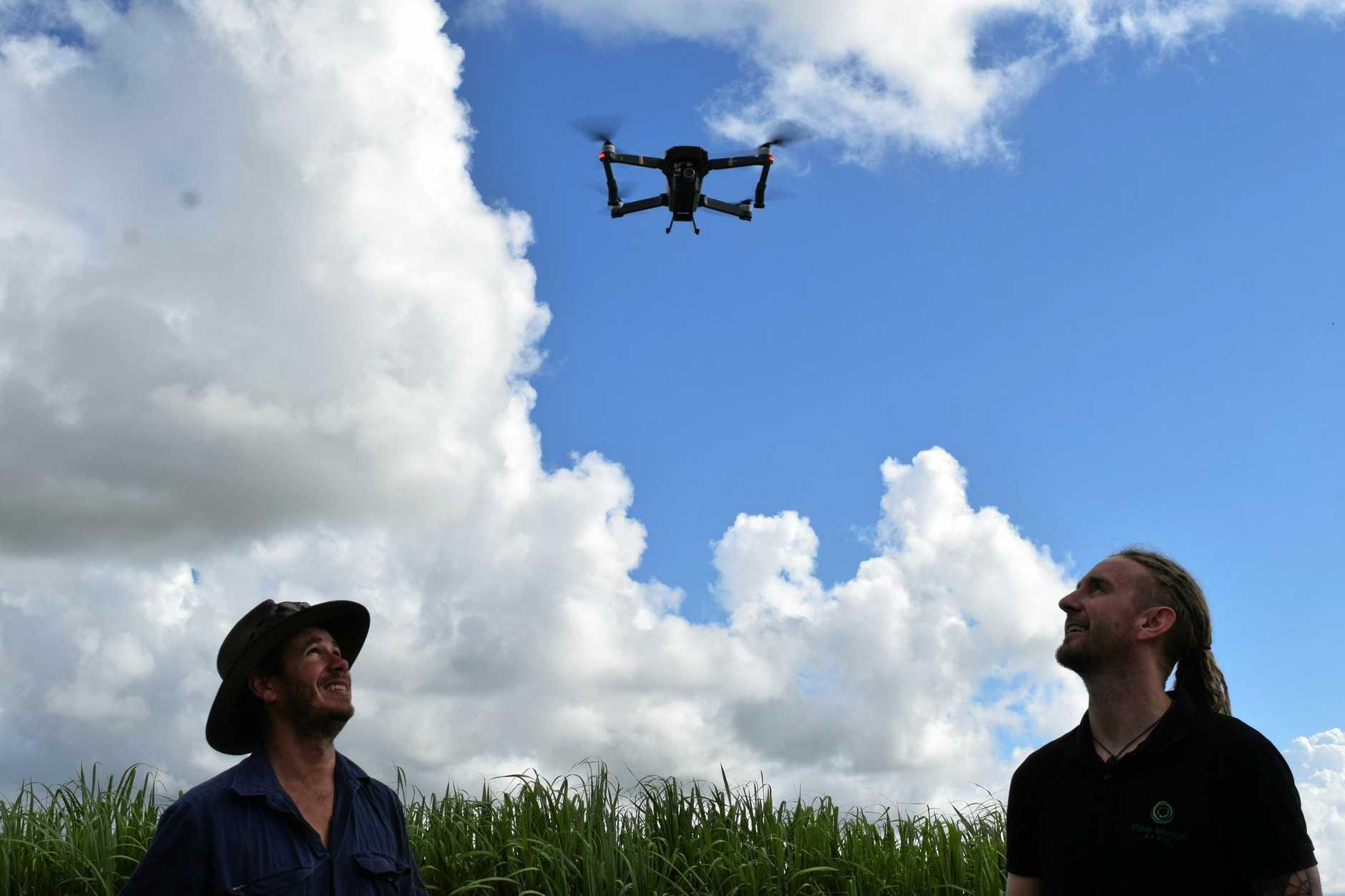 Cane grower Phil Deguara and cinematographer Jac Kotze.