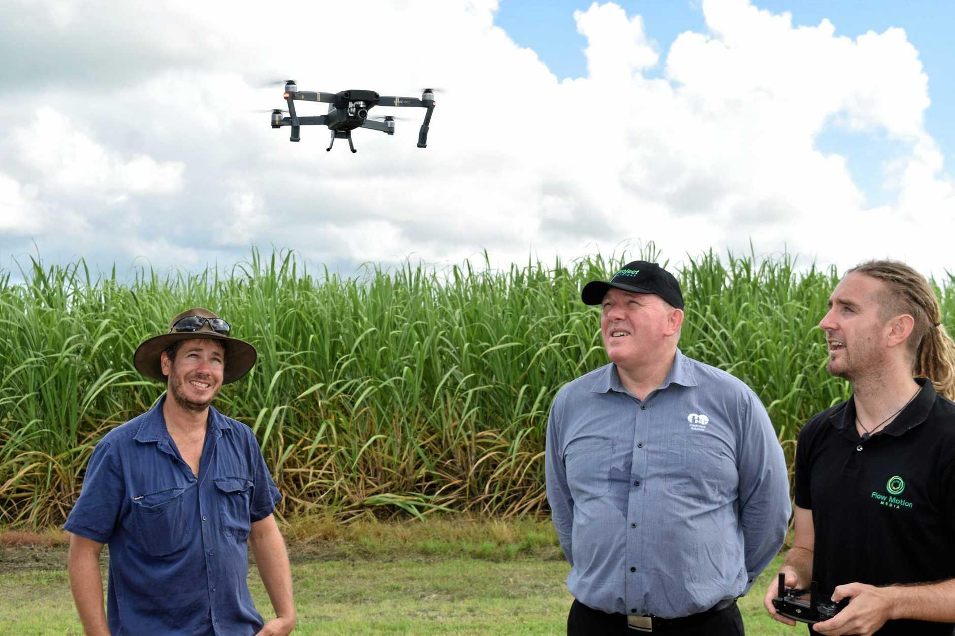 Cane grower Phil Deguara, Project Catalyst coordinator Craig Davenport and cinematographer Jac Kotze.
