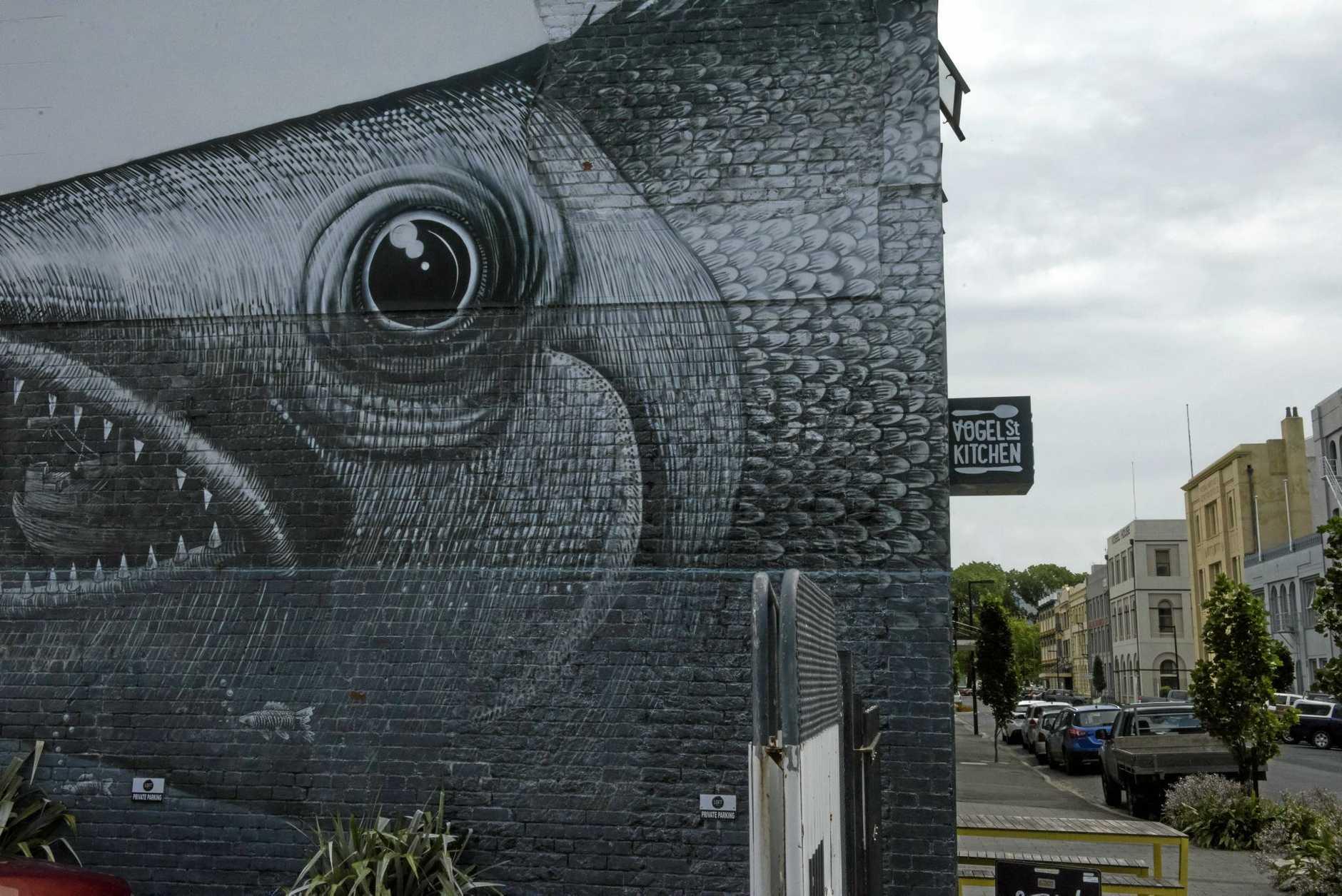 Street art is around every corner as part of the Dunedin CBD art walks.