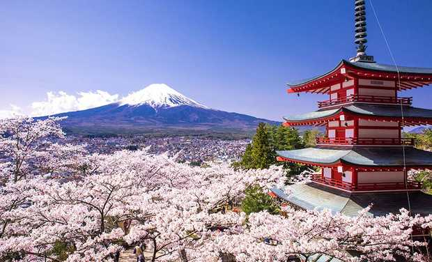 Three councillors from Toowoomba are heading to Japan, with ratepayers footing the bill.
