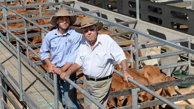 Bruce McKenzie with his grand son Riley McKenzie at Gracemere sale yards.