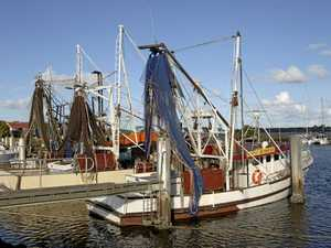 "Commercial Fishing inquiry report labelled ""wishy washy"""