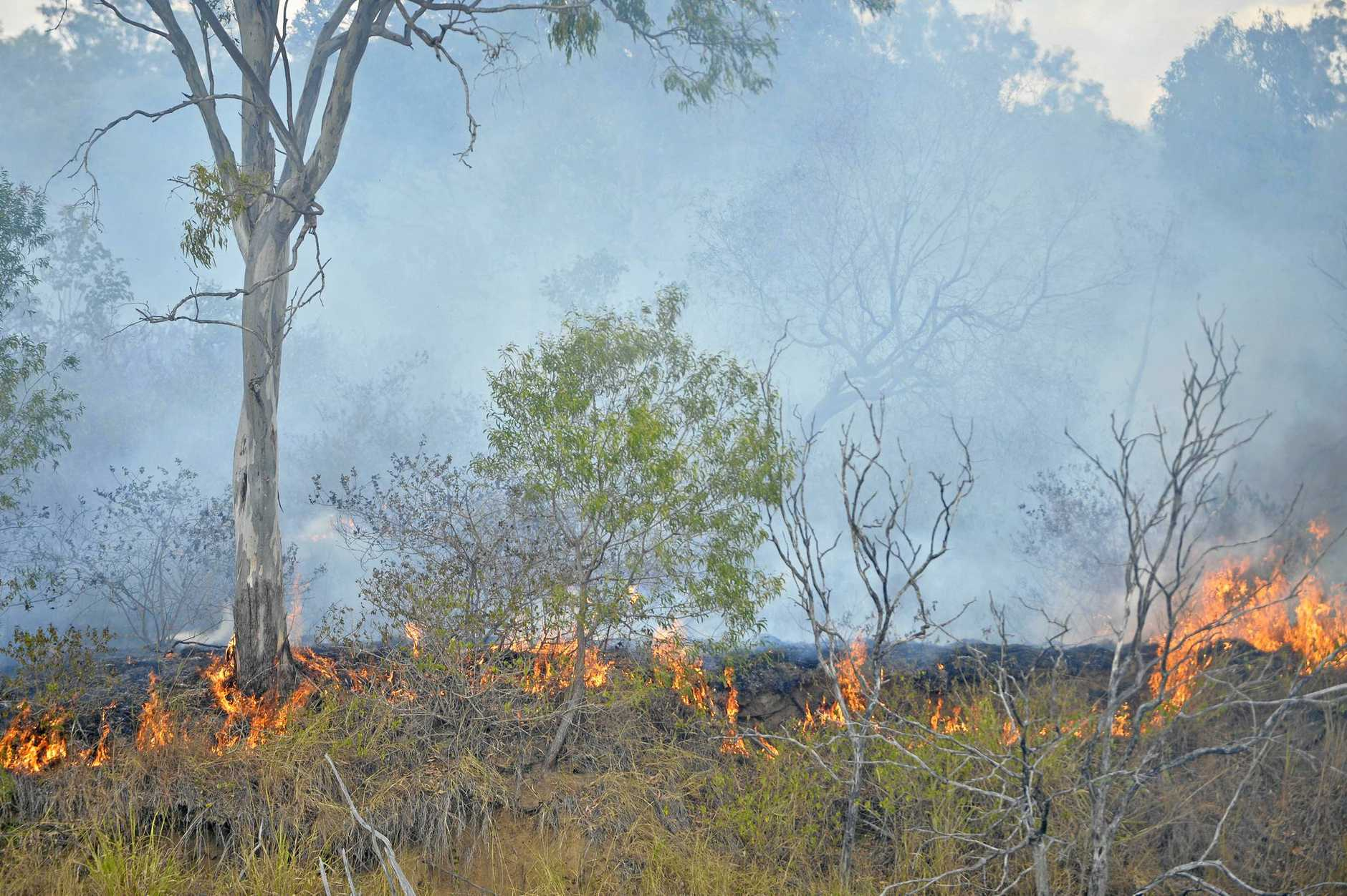 An isolated bush fire at Boyne Island is expected to burn for days, local and rural brigades are on scene, back burning in order to control of the blaze.