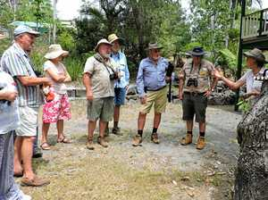 Gympie naturalist club weeds out feral plants