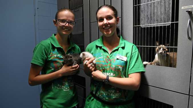 Laura Musset and Bonnie Heit from the Kingaroy RSPCA.