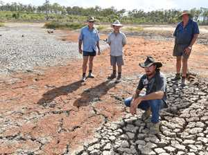 What you can do to help farmers on the Fraser Coast