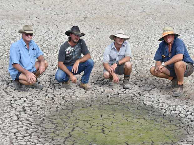 Farmers hoping for a change in the weather - (L) Bill Ward with sons Col and Mark and canefarmer Allen Birt in a dried out section of the Ward's dam at Aldershot.