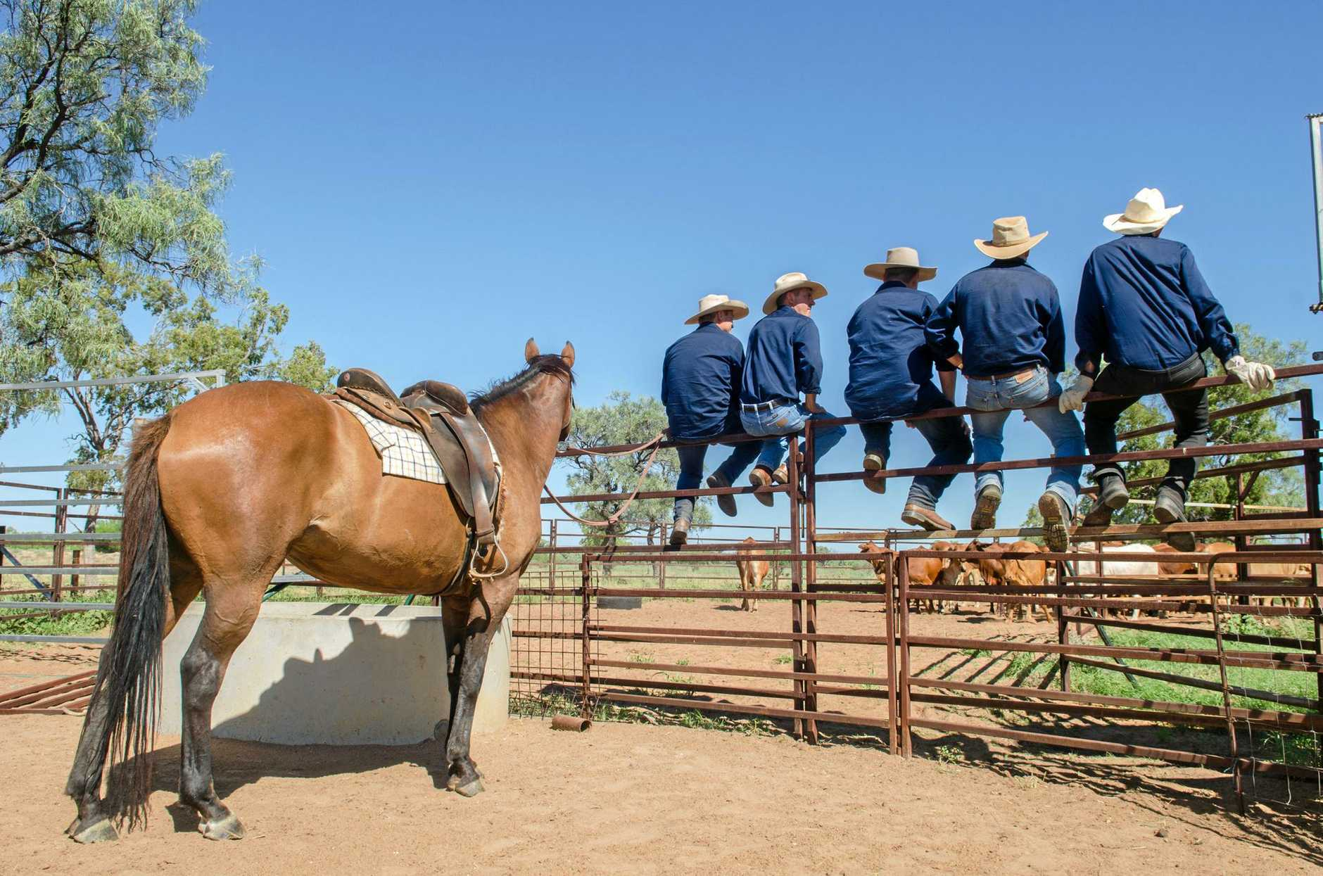 Participants are pushed out of their comfort zones at the Outback School of Business.