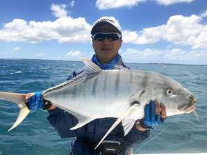 Fishing report: Autumn brings tuna migration to Bay