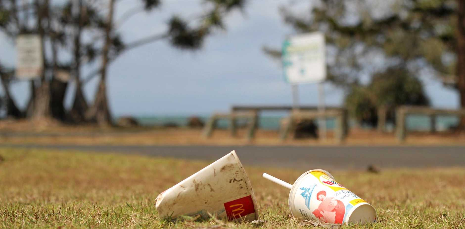 Cleaning up Australia starts with taking personal responsibility and taking action. Photo Leah Kidd / NewsMail