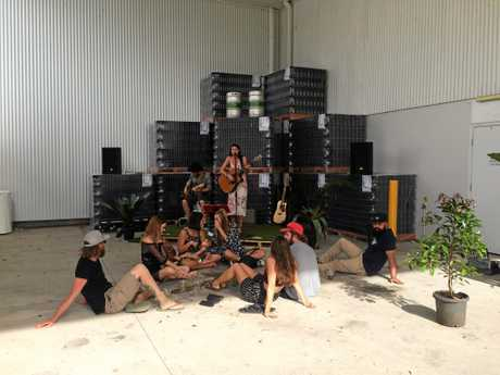 Live music at the Stone & Wood Brewing Company open day, Murwillumbah