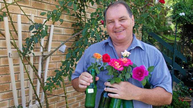 Bracken Ridge gardener David Stephenson gets his roses ready for the 21st Colour on Parade Annual