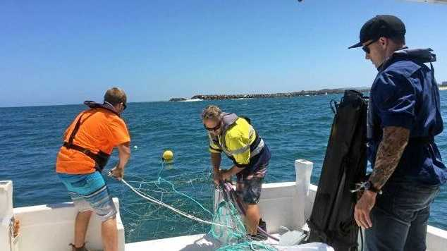 Calmer Waters Needed To Redeploy Nets