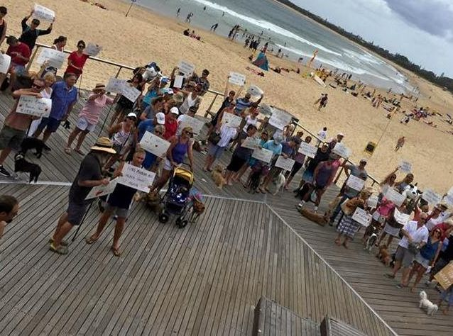 STEPPING OUT: Dog owners united at Mooloolaba to protest dog laws in November 2016.