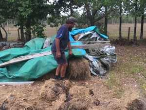 More than 30 bales of hay stolen from Hervey Bay property