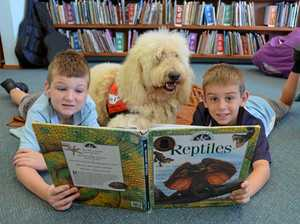 How this dog helps kids learn to read