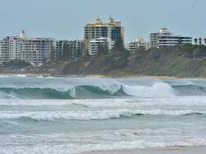 Monster swell brings big surf to Coast ... finally