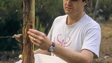 Queensland Museum Arachnologist Owen Seeman collecting specimens.