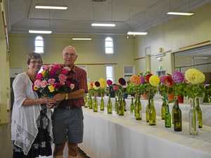 Flower show blooms despite dire season