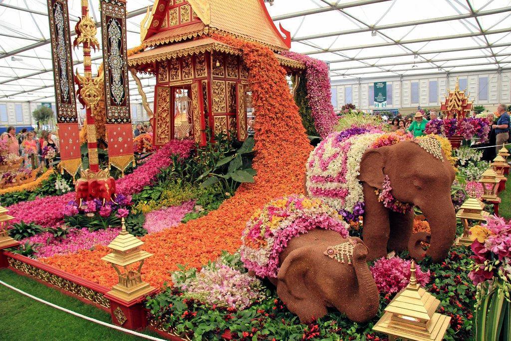 NO SPORT: Chelsea Flower Show.