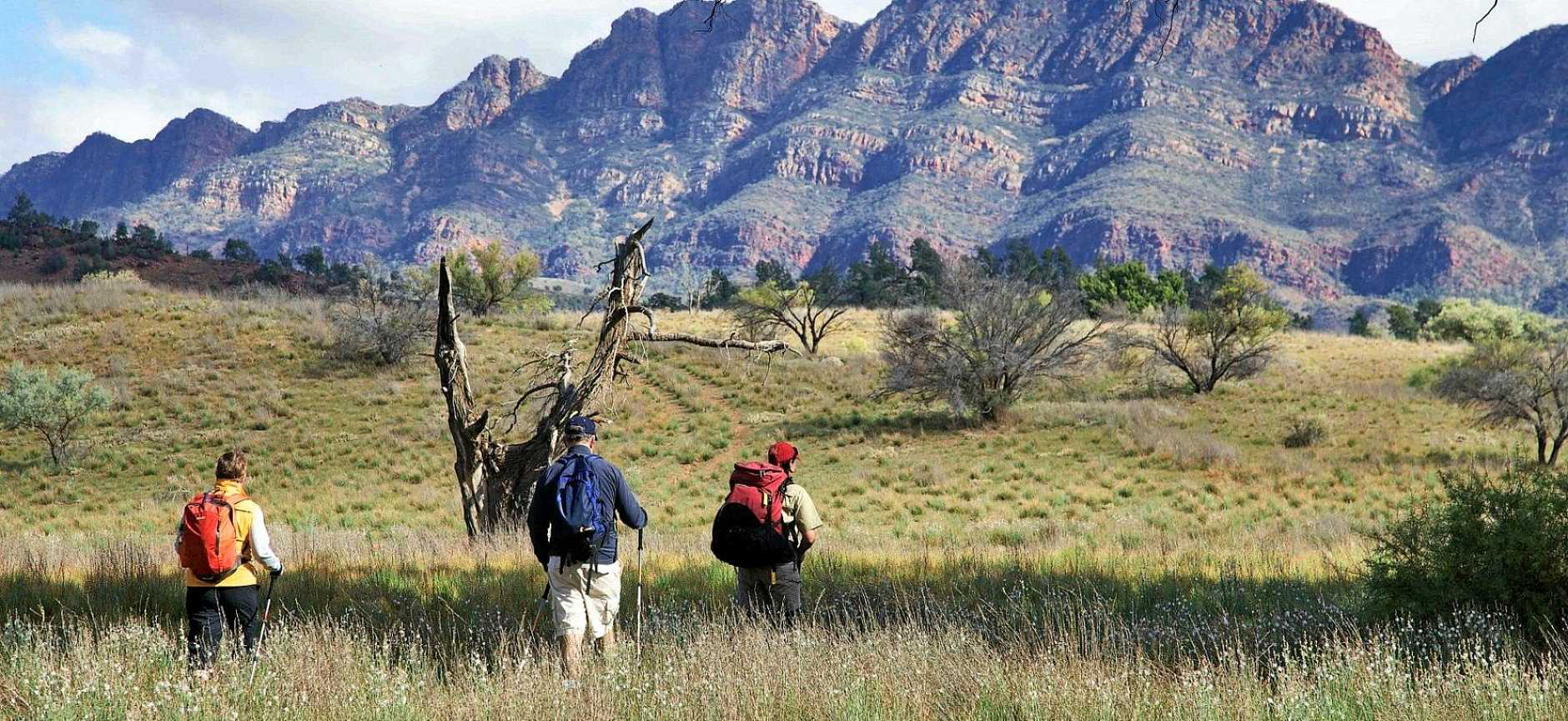 ARKABA TRAIL:  quintessential outback landscape experience. Credit Arkaba Station.