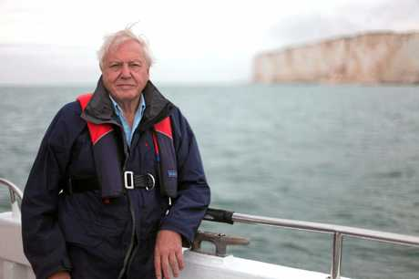 TRIBUTE: The 'Attenburger' has been created as homage to Sir David Attenborough, pictured here in a scene from the TV special The Death of the Oceans. Supplied by Channel 10.